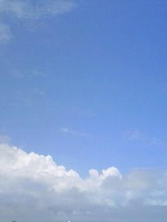 梅雨の合間の晴れ模様♪