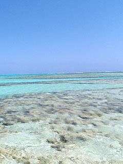 百合ヶ浜の砂浜以外の場所