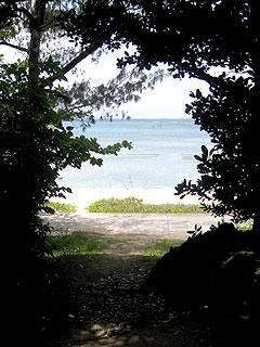 備瀬の海へ抜ける道