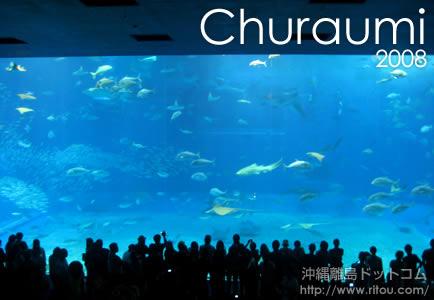 美ら海水族館2008