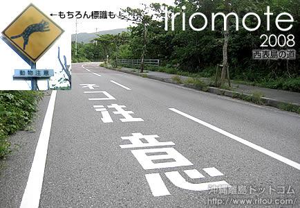 ネコ注意の道路標示