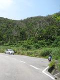 野底マーペー「登山道駐車スペース」