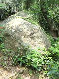 野底マーペー「分かれ道の大きな岩」