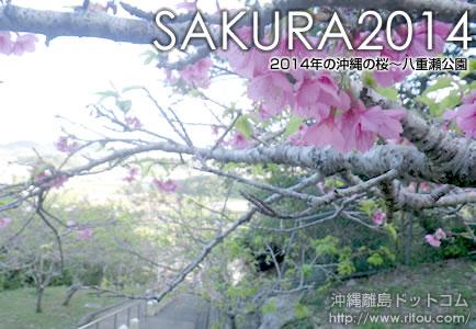 ほぼ葉桜の八重瀬公園