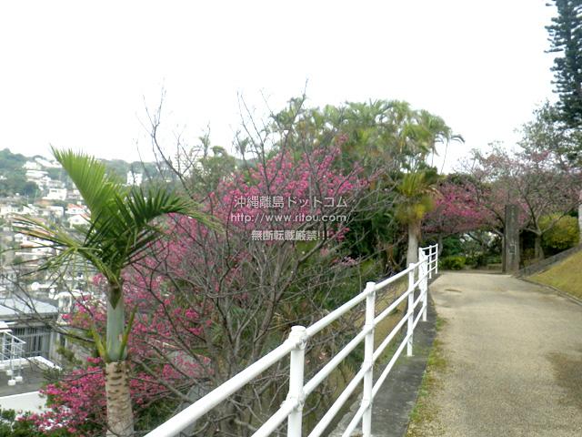 2017年2月18日の繁多川公園