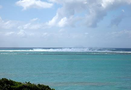 青い海にめっちゃ高い白い波