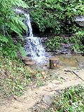 トレッキングコースの小さな滝