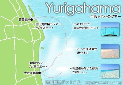 百合ヶ浜へのツアー