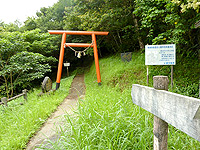 奄美大島「湯湾岳登山道」
