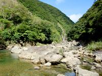 奄美大島「タンギョの滝への道のり」