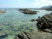 奄美大島「アオンのリーフ」