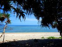 奄美大島「渡連海岸」
