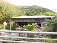 奄美大島「藍染め よしかわ工房」