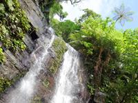 西表島「ゲーダの滝1段目/滝壺」