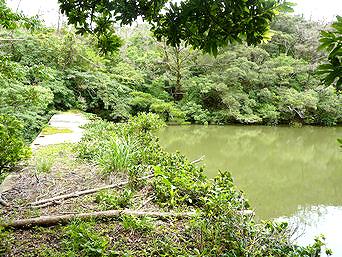 加計呂麻島の艦船用給水ダム跡