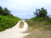 喜界島「トンビ崎公園」