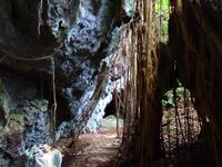 喜界島「ウフヤグチ鍾乳洞 外部」