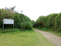 喜界島「荒木中里遊歩道」