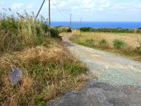沖永良部島「アバの滝への道」