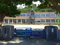 請島「池地小中学校/デイゴ並木」