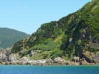 ハンミャ島「島肌」