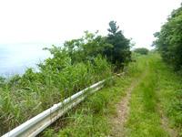 与路島「大縄/ナブリュウ崎への後半の道」