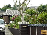 沖永良部島のホテル/民宿「Shimayado當/島宿あたり」