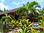 座間味島のコテージ海の茶屋