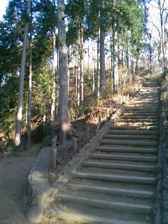 高尾山山頂へ(稲荷山コースから)