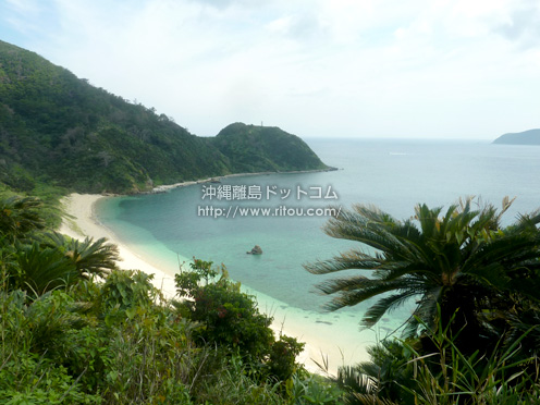 【奄美大島】超穴場ビーチ「くじら浜」
