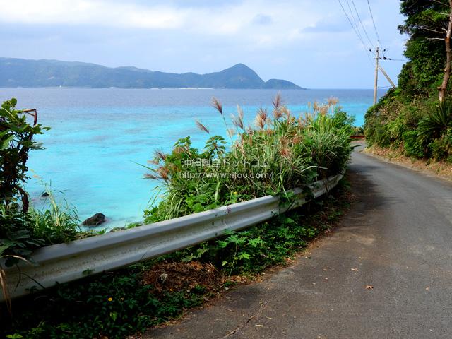 崎原海岸へと続く道もかなりヤバイ!
