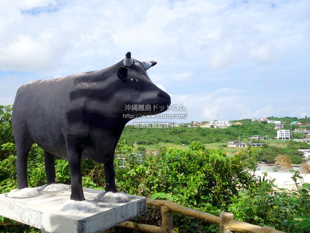 この牛に会いにインギャーへ行きました!