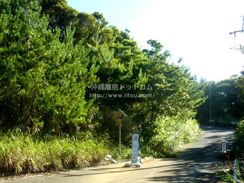 【加計呂麻島】島の道は半分が通行止め。行く前に通れる道を聞きましょう