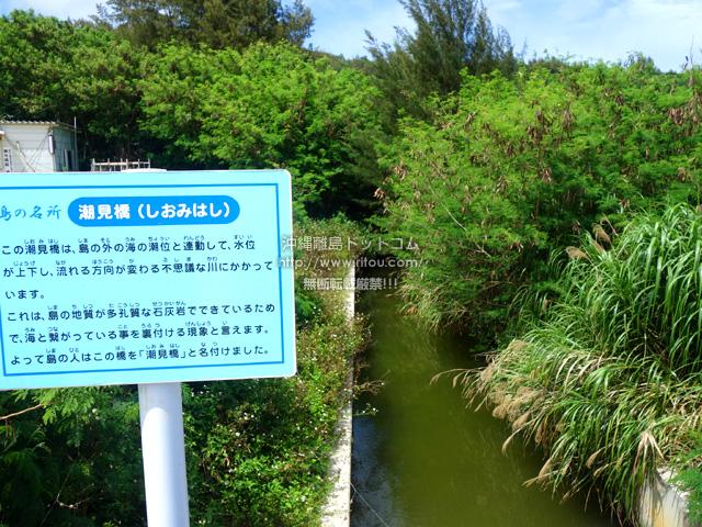 島内陸でありながら潮の状況を知ることができる場所
