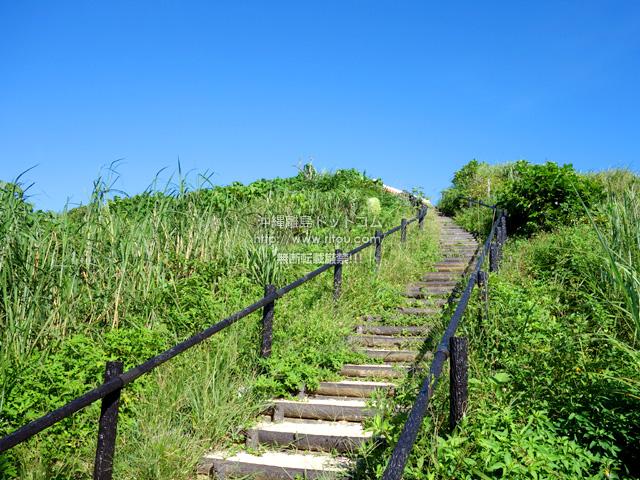 整備された登山道も雑草がちらほら