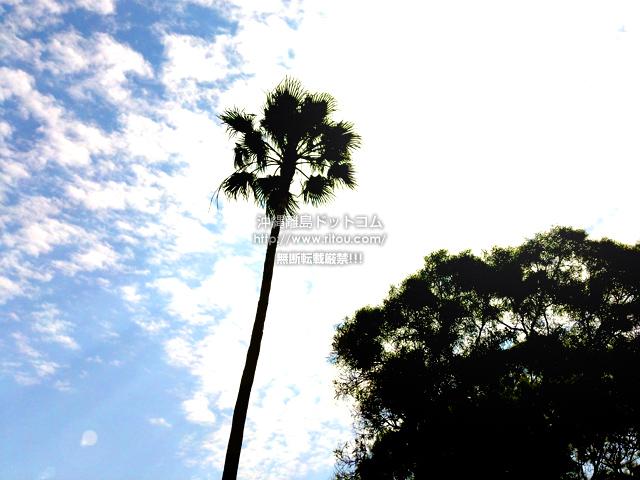 2020/03/27 の空/雲/青空
