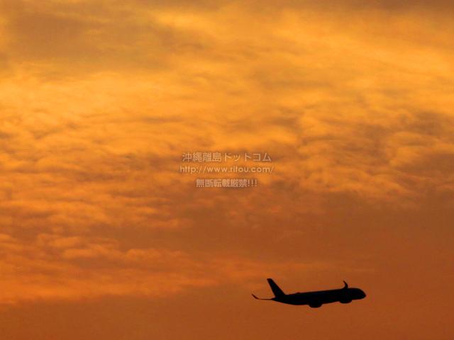 2021/06/20 の飛行機/航空機