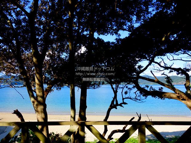 加計呂麻島の渡連海岸