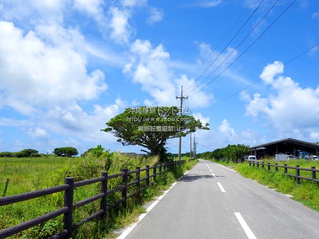 黒島の黒島絶景ロード/メインストリート