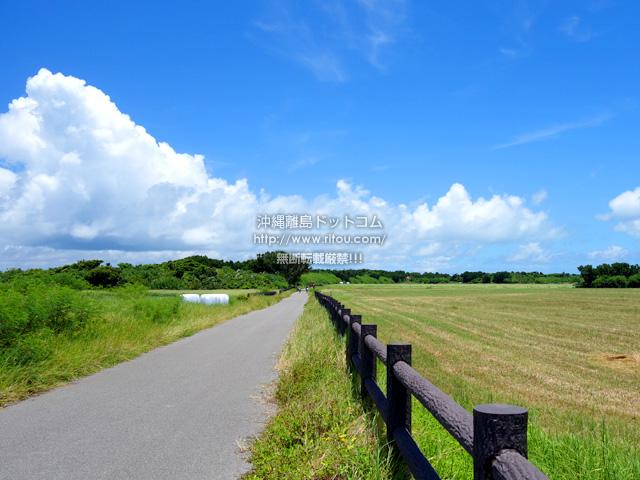 黒島の仲本海岸と灯台を繋ぐ道