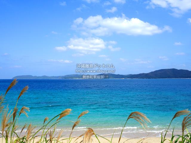 奄美大島の倉崎海岸/倉崎ビーチ