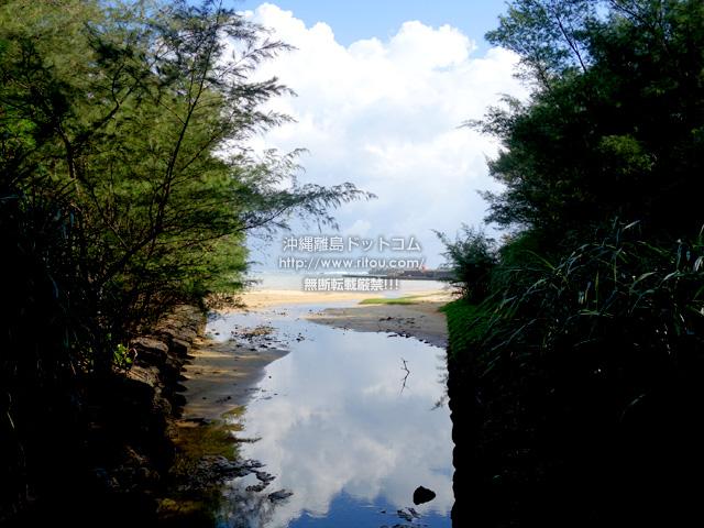 奄美大島の大瀬海岸/宇宿農村公園/サイクリングロード