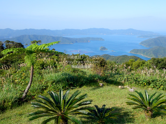 奄美大島の油井岳展望台
