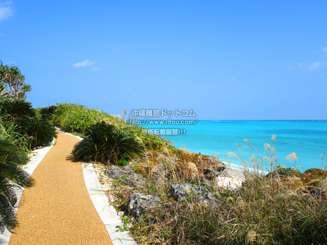 与論島の大金久海岸遊歩道