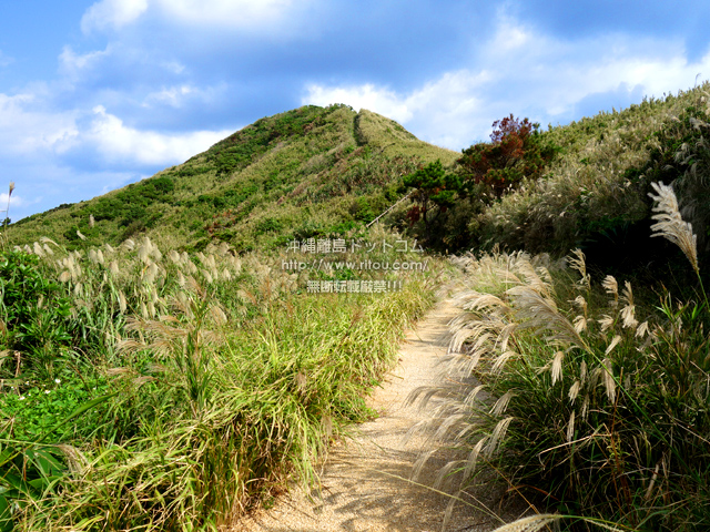 渡名喜島の西森園地遊歩道/登山道