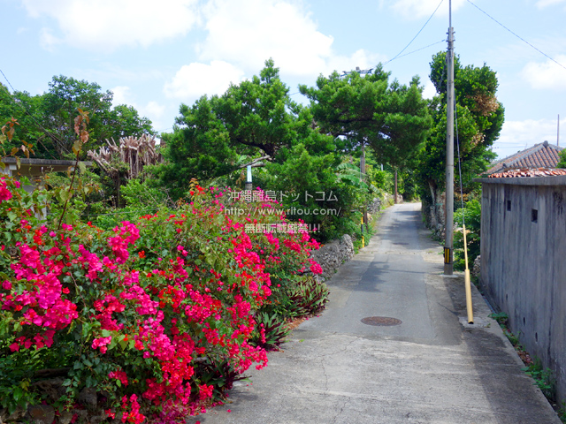 粟国島のナビィの家