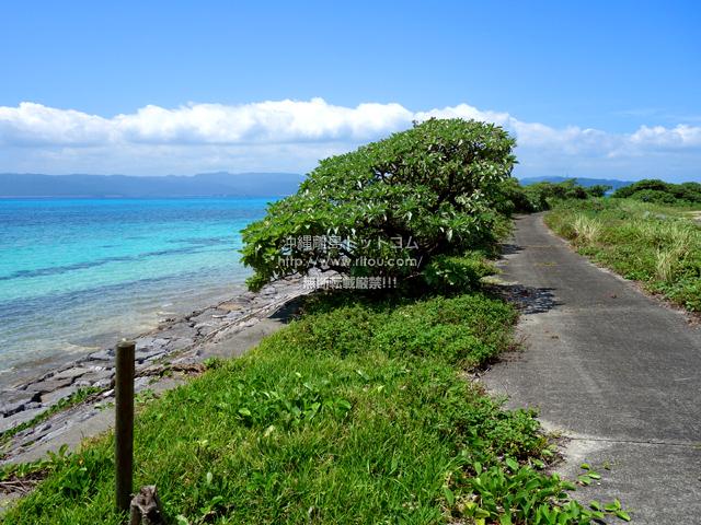 鳩間島の鳩間小中の遊歩道
