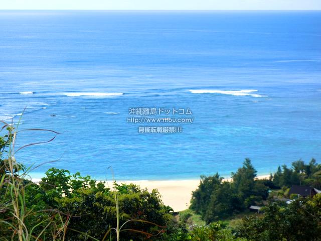 加計呂麻島のくじらの見える丘
