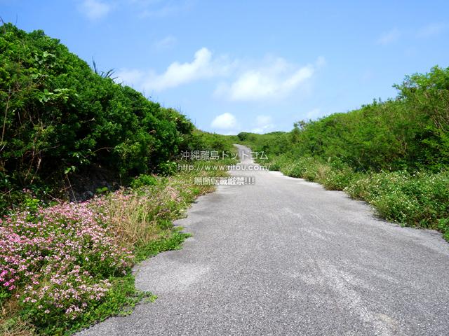波照間島の波照間周回道路