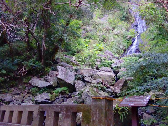 奄美大島のフナンギョの滝